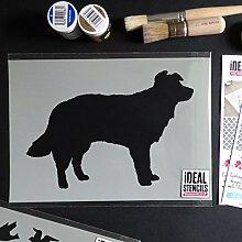 Collie Hund Schaf Hund Schablone Farbe Dekor auf Wände Stoff & Möbel wiederverwendbar Kunst Handwerk - halb geschliffen Durchsichtig Schablone, L/35X54CM