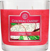 Colonial Candle® Kerze 3–1/-/Bratenspritze