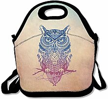 Color Owl Portable Lunch Box Tote Bag Rugged