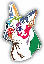Colorful Boston Terrier Dog - Self-Adhesive
