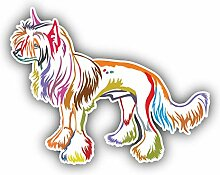 Colorful Chinese Crested Dog - Self-Adhesive