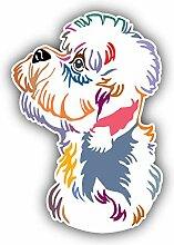 Colorful Dandie Dinmont Terrier Dog -