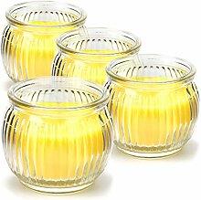 com-four® 4X Anti-Mücken-Kerze im Glas -