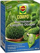 Compo Buchsbaum Langzeit Dünger | 6 Mo.