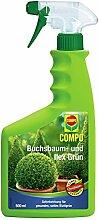 COMPO Buchsbaum- und Ilex Grün für alle