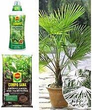 COMPO®  Palmendünger & Palmenerde &Winterharte