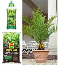 COMPO®  Palmendünger & Palmerde & Kanarische