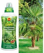 COMPO®  Palmendünger & Washingtonpalme
