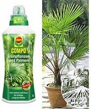 COMPO®  Palmendünger & Winterharte Kübel-Palme