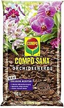 COMPO SANA Orchideenerde mit 8 Wochen Dünger für