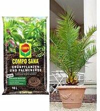 COMPO® SANA® Palmenerde & Kanarische Dattelpalme