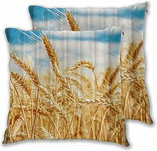 CONICIXI Gold Weizen Maispflanzen Ernte Sunrise