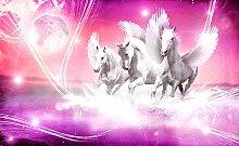 Consalnet Fototapete Weißer Pegasus, Motiv B/L: