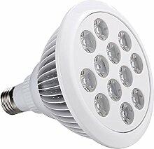 Coocheer E27 LED Pflanzenlampe 24W Pflanzenlichter Wachstumslampe Blau Rot Pflanze Wachsen Licht für Zimerpflanzen, Blumen und Gemüse (12 Lampe Perlens)