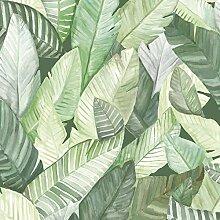 Coordonné Tapete 10 x 0,48 m - Versetzter Ansatz - Glatt - Stil: Natur - z.B. Wohnzimmer, Schlafzimmer, Flur, Foyer - Farbe: Dunkelgrün Hellgrün Weiß