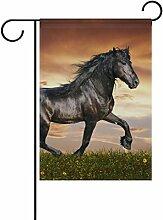 COOSUN Arabian Horse Polyester Garten Flagge im