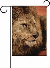 COOSUN Lion Liegen Die Arena Polyester Garten