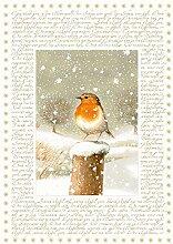 Coppenrath Weihnachten Robin Big Traditionelle