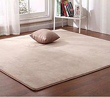 Coral Fleecedecke/ Haushalt Tür Decke/Teppichboden Bett Schlafzimmer Teppich-C 160x280cm(63x110inch)