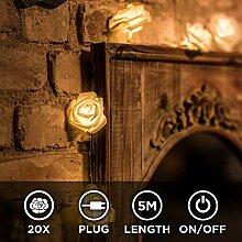 CozyHome LED Lichterkette Rosen weiß - 5m
