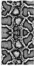CPYang Handtuch mit Tiermotiv und Schlangenmuster,
