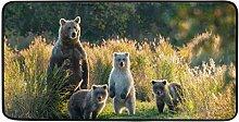 CPYang Küchenteppich mit Tierbären, rutschfest,
