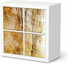 creatisto Dekosticker für IKEA Kallax Regal 4 Türelemente   Muster Möbel-Aufkleber Folie Möbelfolie selbstklebend   Möbel aufpeppen Wohn Deko Ideen   Erholung Wellness Unterholz