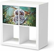 creatisto Designfolie Kindermöbel für IKEA Expedit Regal 2 Türen Quer   Möbel-Sticker Folie Klebefolie   Wohnideen IKEA Möbelfolie Kinder-Zimmer Wohnaccessoires   Kids Kinder Wuschel