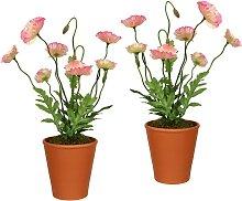 Creativ green Künstliche Zimmerpflanze (2 Stück)