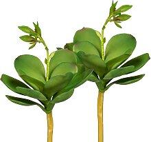 Creativ green Kunstpflanze Echeveria mit Blüte,