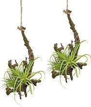 Creativ green Kunstpflanze Hängeast mit
