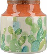 Creative Tops Drift Kaktus Vorratsdose, aus/weiß