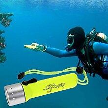CREE Q5 LED Tauch-Taschenlampe für