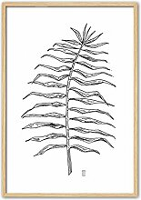 Cuadriman Natura Wandbild Pflanze Tintenpatrone