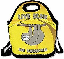 Cute Sloth Live Slow Die Whenever Convenient Lunch