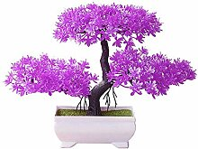 CWeep Potted Artificial Potted Pine Tree Bonsai