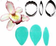 Cymbidium Orchidee Blütenblatt Blume Ausstecher