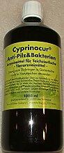 Cyprinocur Anti Pilz und Bakterien, 1000 ml – Koi-Krankheiten effektiv bekämpfen – Mittel gegen Fisch-Krankheiten, Schimmel & bakterielle Flossenfäule auf Koi im Teich