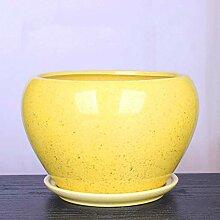CYQ Apfelblumentopf Keramik Große Spezielle