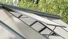 Dachfenster Moya Garten Living