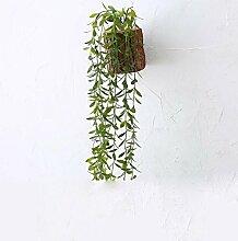 Daeou Simulation fleischigen Holzstapel grüne