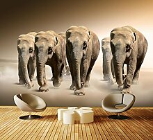 dalinda Premium Vliestapete Elefantengruppe Afrika