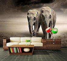 dalinda Premium Vliestapete Elefantentraum Afrika