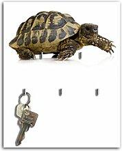 Dalinda Schlüsselbrett mit Design Schildkröte