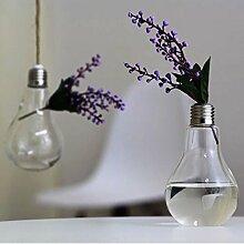 DaoRier Glühbirne Glas Vase Desktop Vase Handwerk