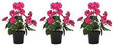 DARO DEKO Kunst-Blume Geranie Stehend 3 Stück Pink