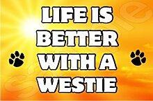 Das Leben Ist Eine Bessere Mit A Westie Hund - Jumbo Magnet/Jubiläum