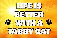 Das Leben Ist Eine Bessere Mit Einem Getigerte Katze - Jumbo Magnet/Jubiläum