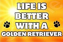Das Leben Ist Eine Bessere Mit Golden Retriever Dog - Jumbo Magnet/Jubiläum