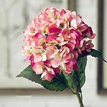 das wohnzimmer dekor dekoration blumen, blumen blühen blumen blühen.,(Herbst - Rose)